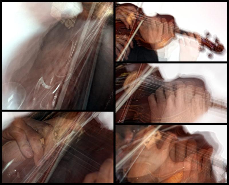 Marco Fusi - violin, viola, viola d'amore